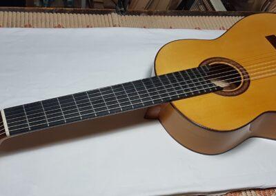 Fernando-Moreno-guitarra-7-cuerdas